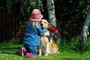 chien-golden-calin-fille-300x200-c