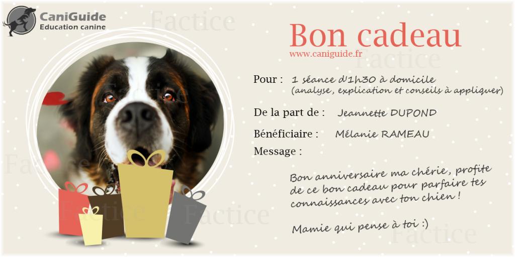 bon-cadeau-education-canine-35