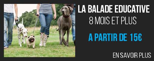 ballade-educative-15e